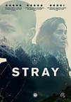 Stray (DVD)