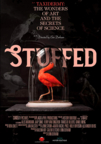 Stuffed (DVD)