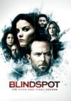 Blindspot Season 5 (DVD)